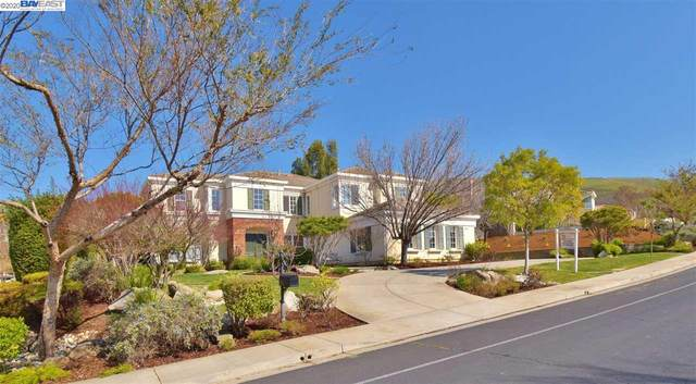 3808 Monte Sereno Terrace, Fremont, CA 94539 (#40897350) :: Blue Line Property Group