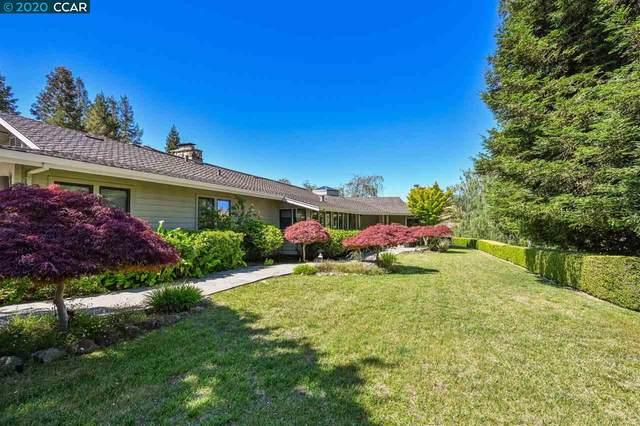 14 Saddleback Ct, Danville, CA 94506 (#40906187) :: Armario Venema Homes Real Estate Team