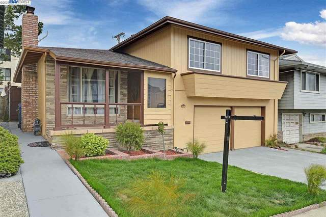 187 Cerro Drive, Daly City, CA 94015 (#40958583) :: Real Estate Experts