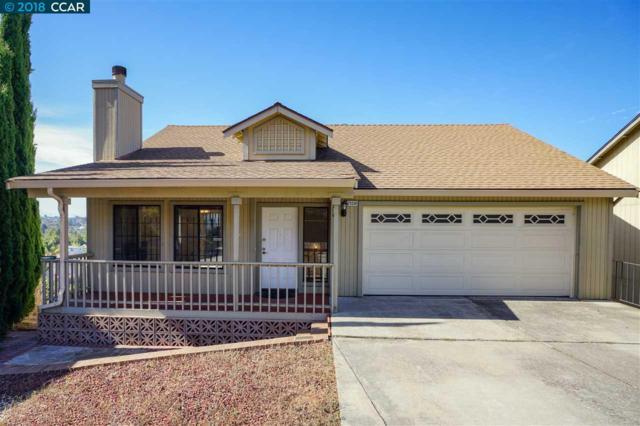 23581 Matthew Ct, Hayward, CA 94541 (#40838364) :: Armario Venema Homes Real Estate Team