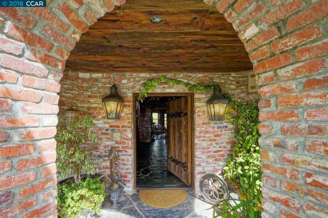 176 Mountain Canyon Ln, Alamo, CA 94507 (#40843641) :: J. Rockcliff Realtors