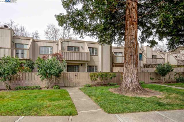 7234 Valley View Ct, Pleasanton, CA 94588 (#40857522) :: Armario Venema Homes Real Estate Team