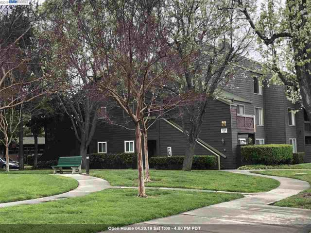 1072 Yarwood Ct Top Floor, San Jose, CA 95128 (#40861056) :: The Grubb Company