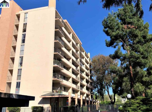 3909 Stevenson Blvd #505, Fremont, CA 94538 (#40862387) :: Armario Venema Homes Real Estate Team
