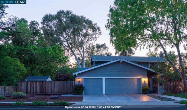 3567 Touriga Dr, Pleasanton, CA 94566 (#40862735) :: Armario Venema Homes Real Estate Team