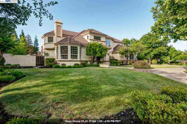 665 Varese Ct, Pleasanton, CA 94566 (#40866408) :: Armario Venema Homes Real Estate Team