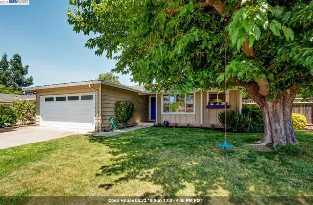 1473 Kolln St, Pleasanton, CA 94566 (#40869994) :: J. Rockcliff Realtors