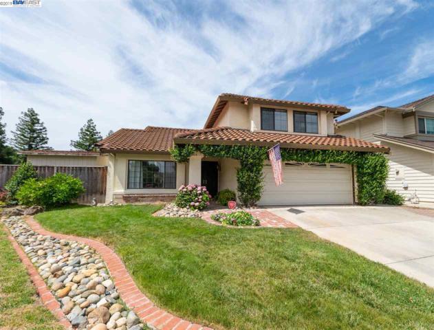 3114 Paseo Robles, Pleasanton, CA 94566 (#40872671) :: Armario Venema Homes Real Estate Team