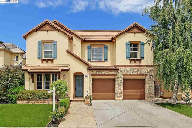 4497 Niland St, Union City, CA 94587 (#40872687) :: Armario Venema Homes Real Estate Team