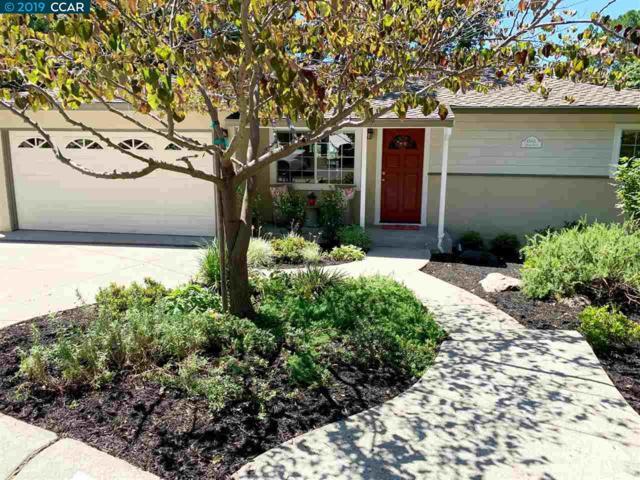 Walnut Creek, CA 94595 :: Armario Venema Homes Real Estate Team