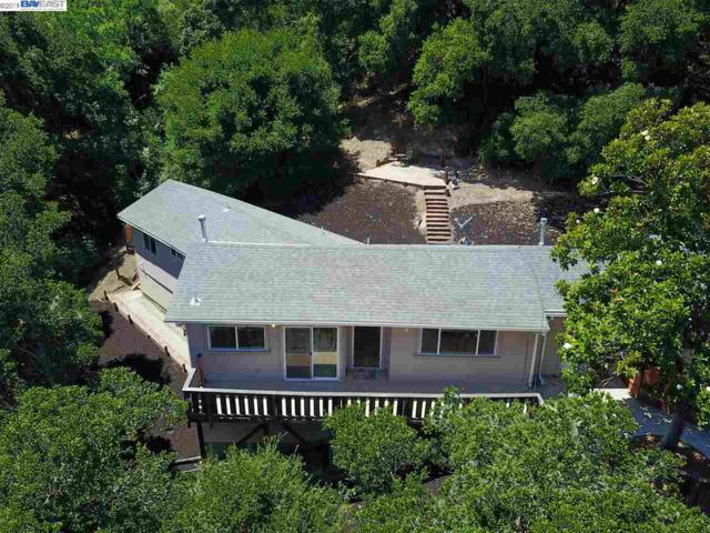 1490 Pleasant Hill Rd, Lafayette, CA 94549 (#40873893) :: Armario Venema Homes Real Estate Team