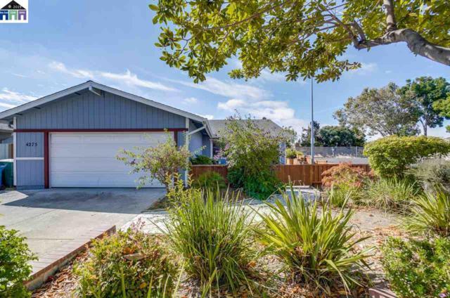 4275 Queen Anne Drive, Union City, CA 94587 (#40874804) :: Blue Line Property Group