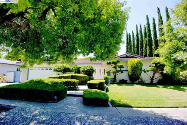 732 Wisteria Dr, Fremont, CA 94539 (#40875058) :: The Grubb Company