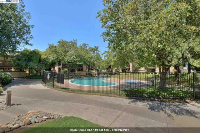 4303 Sacramento Ave, Fremont, CA 94538 (#40877794) :: Realty World Property Network