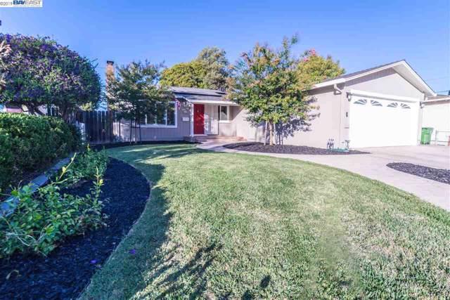 4509 Wheeler Dr, Fremont, CA 94538 (#40881937) :: Armario Venema Homes Real Estate Team