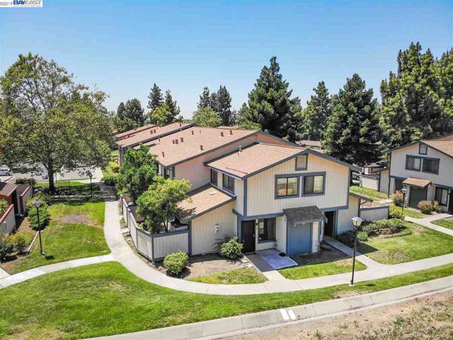 241 Galano Plz, Union City, CA 94587 (#40882897) :: The Lucas Group