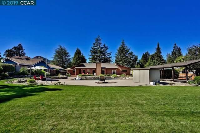 238 Roundhill Pl, Clayton, CA 94517 (#40884784) :: J. Rockcliff Realtors