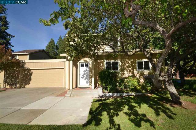 599 Mt. Dell Dr., Clayton, CA 94517 (#40884842) :: The Lucas Group