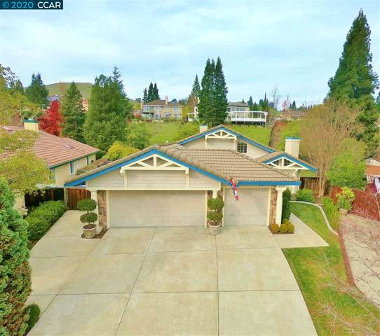 445 Stoneybrook Ct, Danville, CA 94506 (#40893050) :: Realty World Property Network