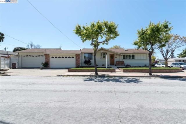 31343 Birkdale Way, Hayward, CA 94544 (#40818330) :: Armario Venema Homes Real Estate Team