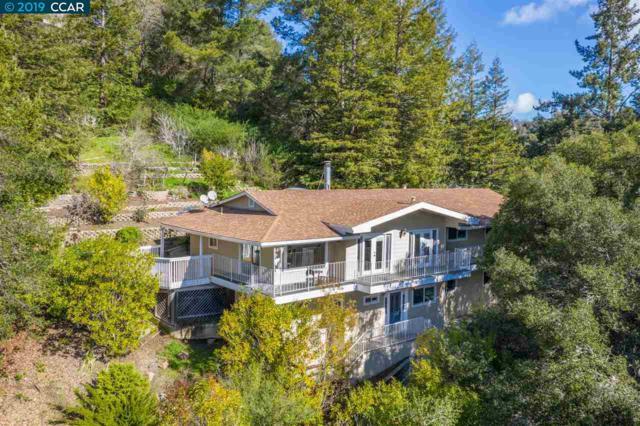 16 Dos Posos, Orinda, CA 94563 (#40856301) :: Armario Venema Homes Real Estate Team