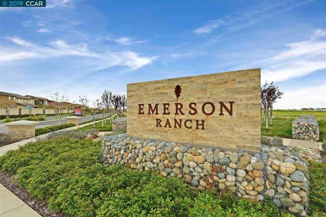 291 Coolcrest Dr, Oakley, CA 94561 (#40859658) :: Armario Venema Homes Real Estate Team