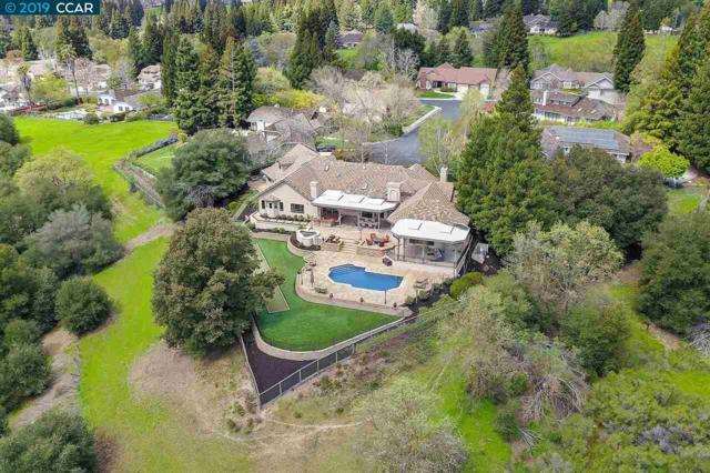 21 Emmons Canyon Ct, Alamo, CA 94507 (#40862394) :: Armario Venema Homes Real Estate Team