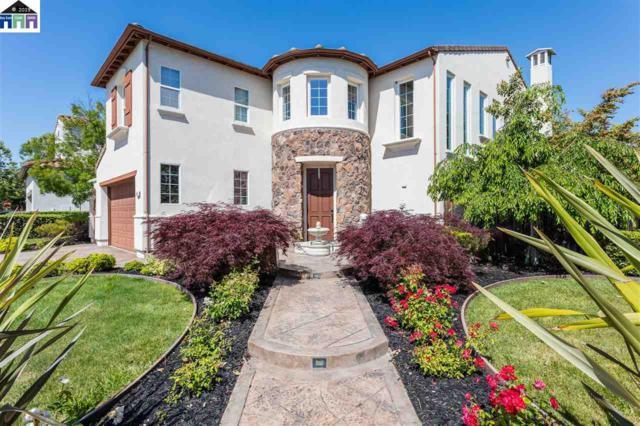409 Ustilago Ct, San Ramon, CA 94582 (#40868566) :: Armario Venema Homes Real Estate Team