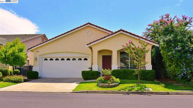 1126 Jonagold Way, Brentwood, CA 94513 (#40882825) :: Realty World Property Network