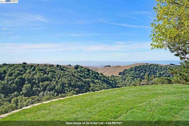 3585 Skyline Dr, Hayward, CA 94542 (#40885617) :: Armario Venema Homes Real Estate Team