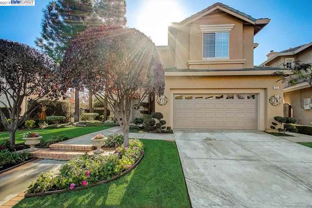 313 Bridgecreek Way, Hayward, CA 94544 (#40888169) :: Armario Venema Homes Real Estate Team