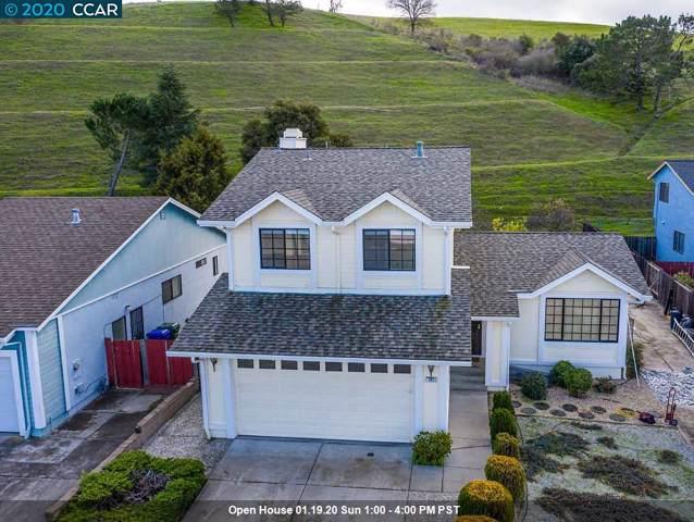 163 Finch Ct, Hercules, CA 94547 (#40891735) :: Armario Venema Homes Real Estate Team