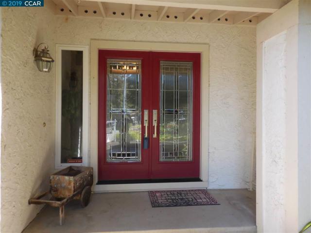 15 Mt Whitney Ct, Clayton, CA 94517 (#40858894) :: Armario Venema Homes Real Estate Team