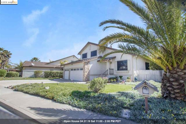 1732 Dolphin Pl, Discovery Bay, CA 94505 (#40859250) :: Blue Line Property Group