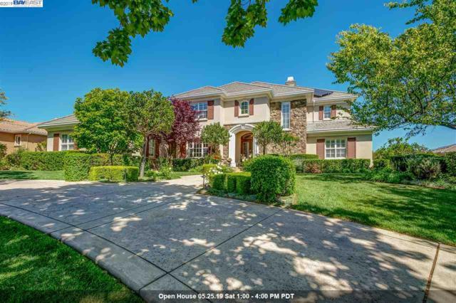 1329 Via Di Salerno, Pleasanton, CA 94566 (#40864820) :: Armario Venema Homes Real Estate Team