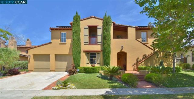 5343 Cypress Hawk Ct, San Ramon, CA 94582 (#40872221) :: Armario Venema Homes Real Estate Team