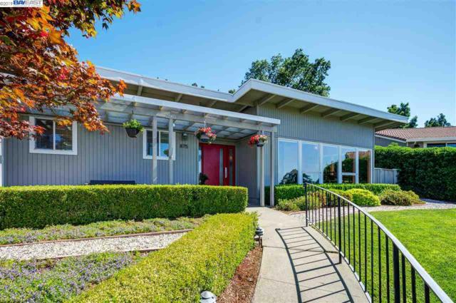 875 Bonde Ct, Pleasanton, CA 94566 (#40872837) :: Armario Venema Homes Real Estate Team