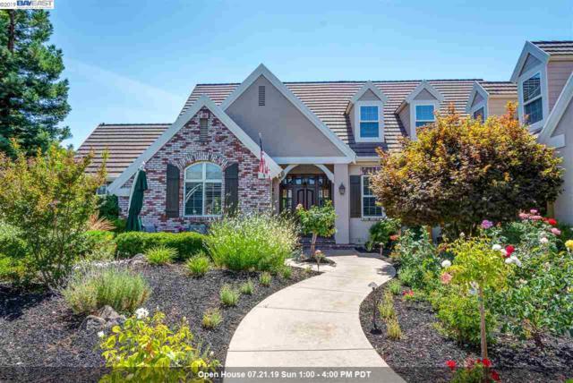 1018 Via Di Salerno, Pleasanton, CA 94566 (#40873582) :: Armario Venema Homes Real Estate Team