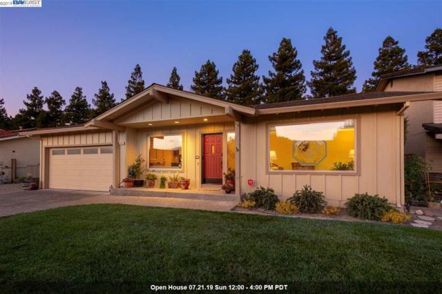 1975 Foxswallow Cir, Pleasanton, CA 94566 (#40873798) :: Armario Venema Homes Real Estate Team