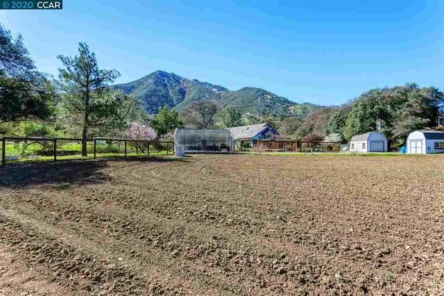3101 Morgan Territory Rd, Clayton, CA 94517 (#40897767) :: Blue Line Property Group