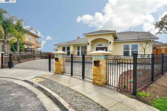 42438 Alvaniece Ct, Fremont, CA 94539 (#40853273) :: Armario Venema Homes Real Estate Team