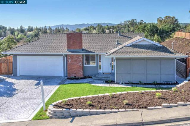 651 Odin Dr, Pleasant Hill, CA 94523 (#40860944) :: Blue Line Property Group