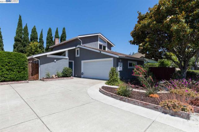 4201 Gemini Dr, Union City, CA 94587 (#40872771) :: Armario Venema Homes Real Estate Team