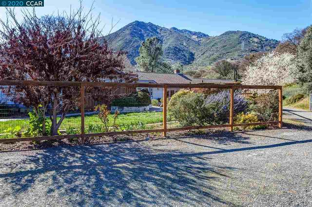 3101 Morgan Territory Rd, Clayton, CA 94517 (#40897767) :: Blue Line Property Group