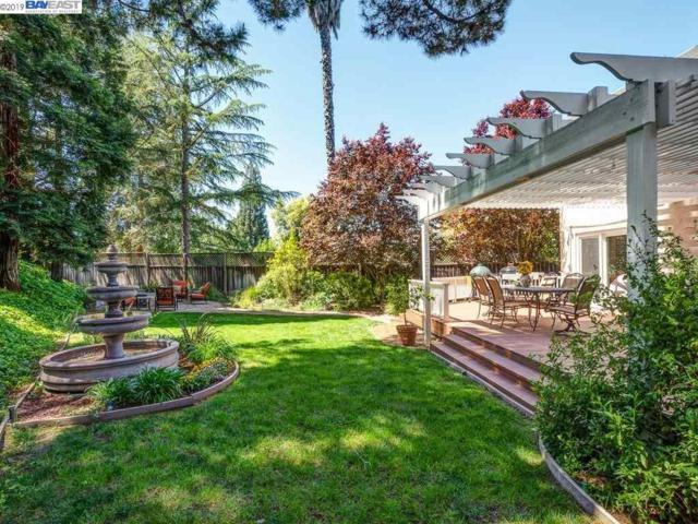 3294 Sylvaner Ct, Pleasanton, CA 94566 (#40863740) :: Armario Venema Homes Real Estate Team