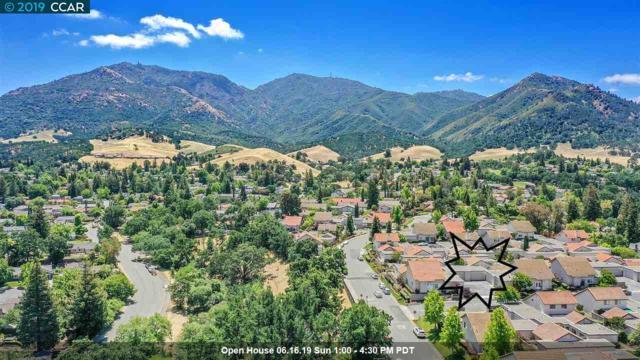 45 Long Creek Cir, Clayton, CA 94517 (#40868362) :: Blue Line Property Group