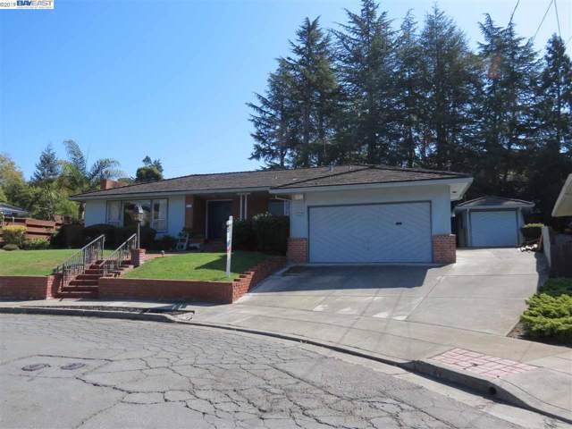 1573 Daniels Dr., San Leandro, CA 94577 (#40885899) :: Armario Venema Homes Real Estate Team