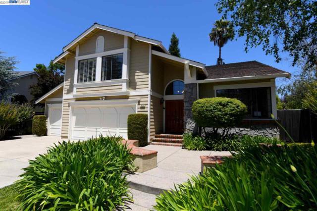 7025 Corte Blanca, Pleasanton, CA 94566 (#40869012) :: Armario Venema Homes Real Estate Team
