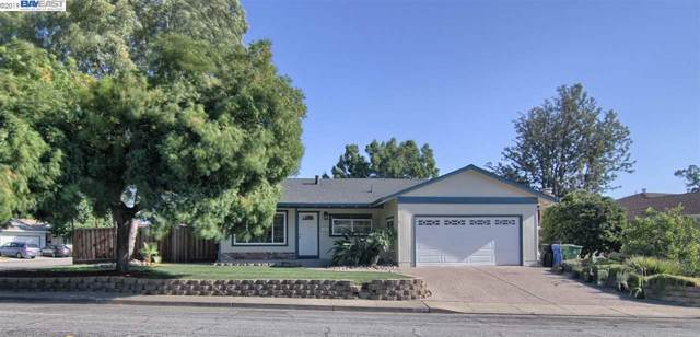 234 Gable Dr, Fremont, CA 94539 (#40883674) :: The Lucas Group