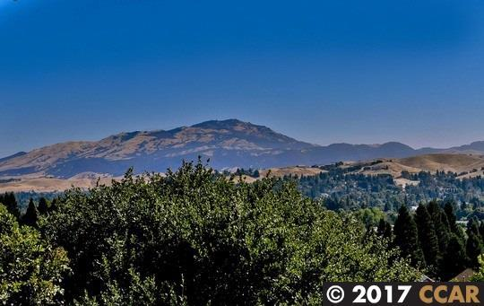 1847 Mockingbird Pl, Danville, CA 94526 (#40790991) :: Realty World Property Network